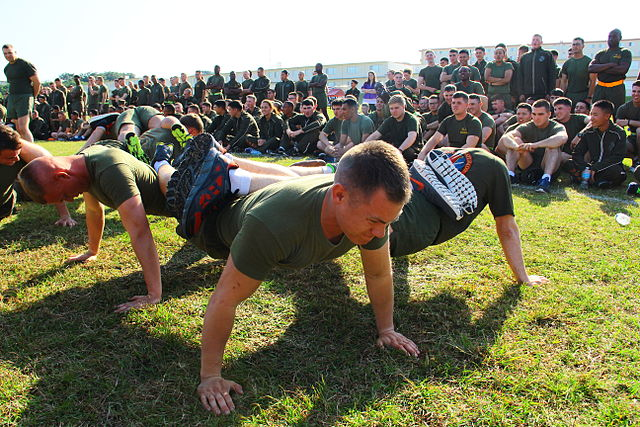Planks Aren't Better Than Other Exercises, But They Have Their Place
